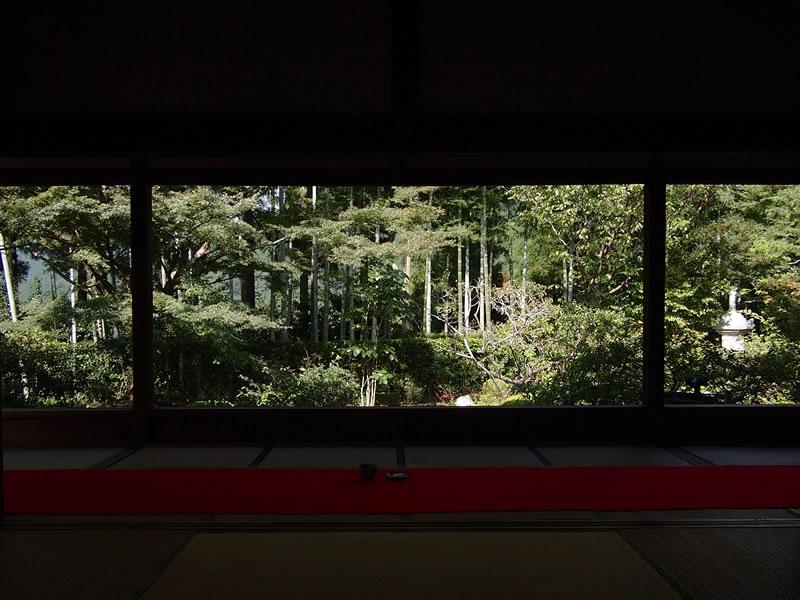 京都 大原 宝泉院 竹林