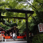 京都 野宮神社(Nomiya Shrine in Kyoto,Japan)