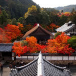 京都 南禅寺 三門の紅葉(Autumn leaves of Nanzenji temple in Kyoto,Japan)