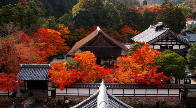 南禅寺 山門の紅葉