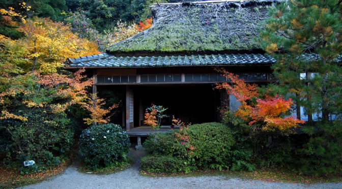 京都 滝口寺の紅葉(Autumn leaves of Takiguchitera temple in Kyoto,Japan)