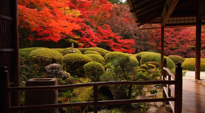 京都 詩仙堂 丈山寺の紅葉(Autumn leaves of Shisendo-Jyozanji temple in Kyoto,Japan)