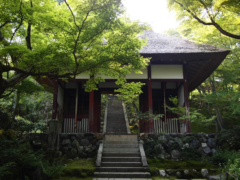 京都 嵯峨野 常寂光寺(Jojakkoji temple in Kyoto,Japan)