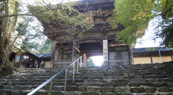京都 高雄 神護寺(Jingoji temple in Kyoto,Japan)