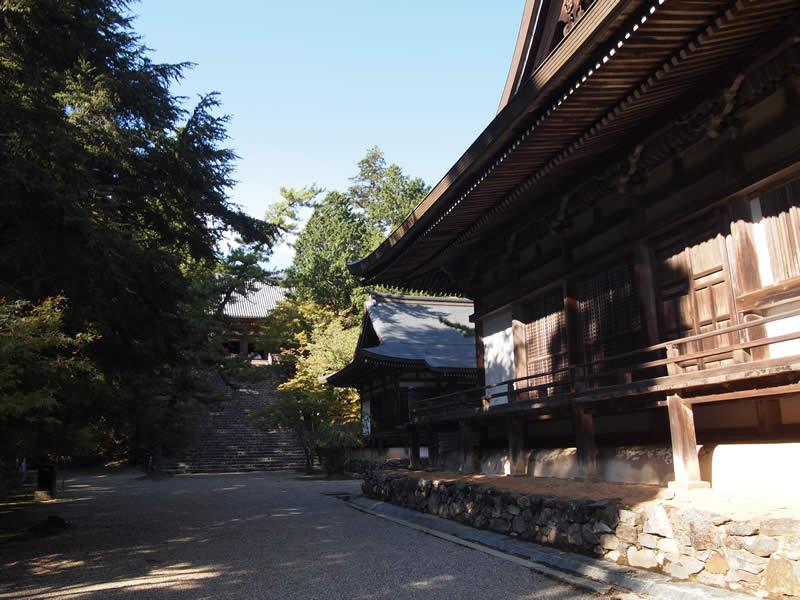 京都 高雄 神護寺(Jingoji temple in Kyoto,Japan)