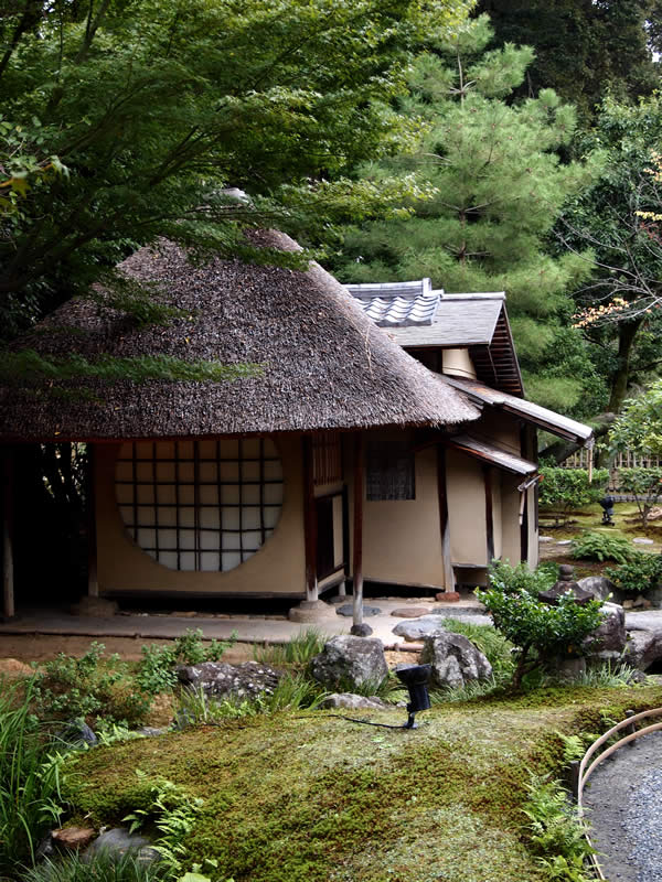 京都 高台寺の紅葉(Autumn leaves of Koudaiji temple in Kyoto,Japan)
