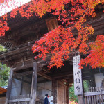 京都 高雄 神護寺の紅葉(Autumn leaves of Jingoji temple in Kyoto,Japan)