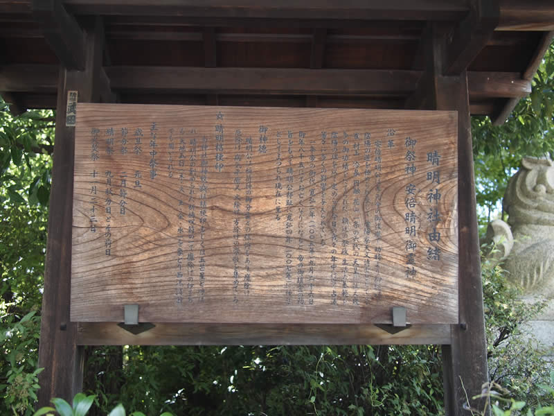 京都 晴明神社の桔梗(Bellflower of Seimei Shrine in Kyoto,Japan)